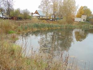 ремонт прудов