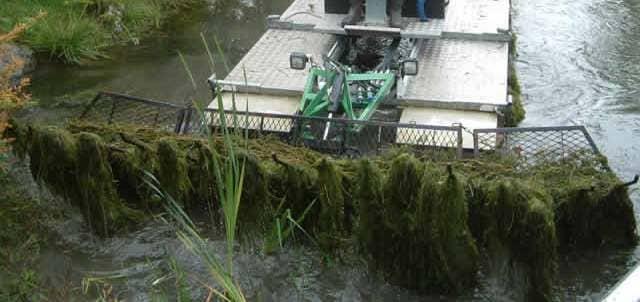 Очистка водоема от водорослей